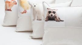 Pillow Animal Wallpaper Full HD#1
