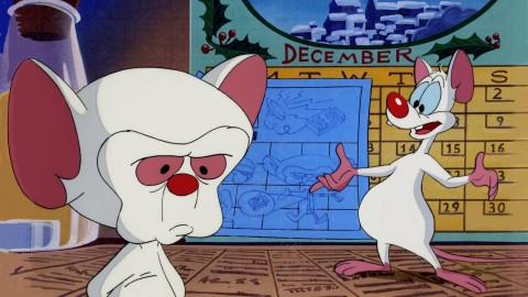 Pinky And The Brain wallpapers high quality