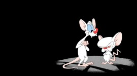 Pinky And The Brain Wallpaper For PC