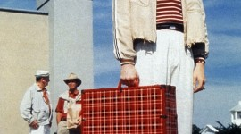 The Truman Show Wallpaper For IPhone Free