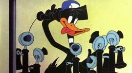 Baby Looney Tunes Photo Free