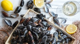 Black Sea Mussels Desktop Wallpaper HD