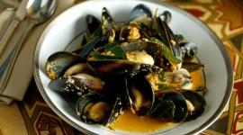 Black Sea Mussels Wallpaper Download Free