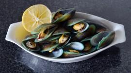 Black Sea Mussels Wallpaper Full HD