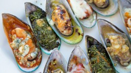 Black Sea Mussels Wallpaper HD
