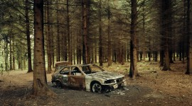 Car In The Forest Desktop Wallpaper