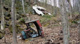 Car In The Forest Photo Free
