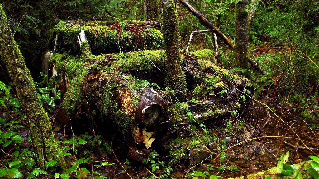 Car In The Forest Wallpapers High Quality Download Free