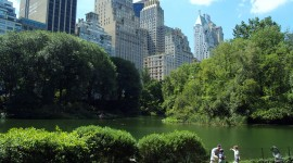 Central Park Desktop Wallpaper