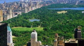 Central Park Photo Download