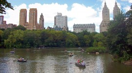 Central Park Photo Free#1