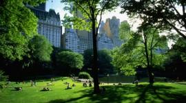 Central Park Picture Download