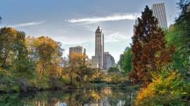 Central Park Wallpaper Download