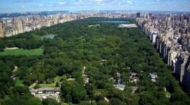 Central Park Wallpaper Free