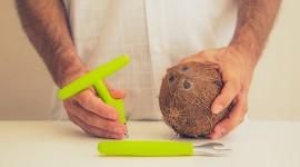 Coconut Opening Wallpaper HD