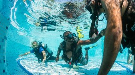 Diving Lessons Desktop Wallpaper HD
