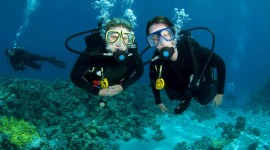Diving Lessons High Quality Wallpaper