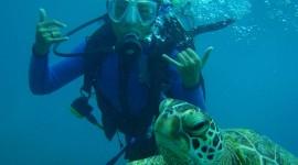 Diving Lessons Wallpaper Full HD