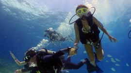 Diving Lessons Wallpaper High Definition