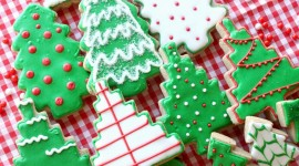 Gingerbread Trees Wallpaper For Android