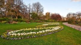 Hyde Park Photo Free