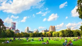 Hyde Park Wallpaper Download