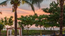 Iguana Beach Club Phuket Wallpaper For IPhone