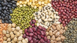 Legumes Wallpaper Gallery