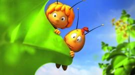 Maya The Bee Photo Download
