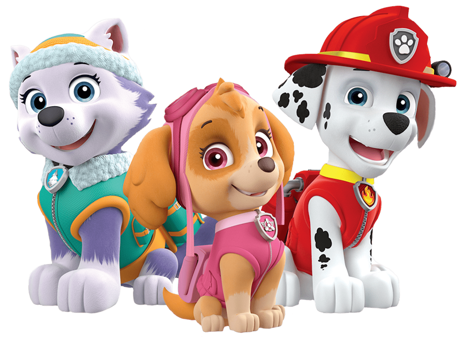 Paw Patrol Wallpapers High Quality Download Free