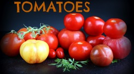 Spicy Tomatoes Wallpaper Download Free