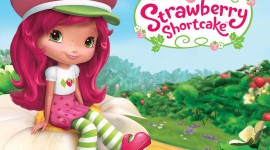 Strawberry Shortcake Aircraft Picture