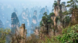 Zhangjiajie National Forest Park Picture#2