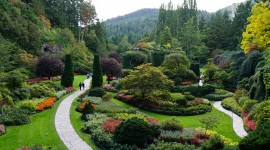 Butchart Gardens Photo Free