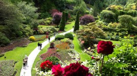 Butchart Gardens Wallpaper