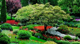 Butchart Gardens Wallpaper Background