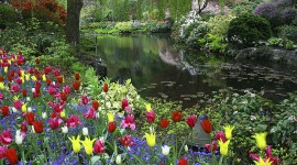 Butchart Gardens Wallpaper For PC