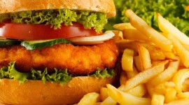 Fish Burger Wallpaper High Definition