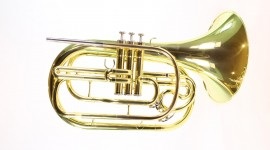 French Horn Photo
