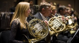 French Horn Photo Download