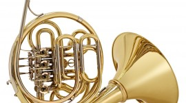 French Horn Wallpaper For Android