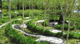 Garden Of Cosmic Speculation Image