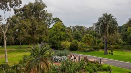 Royal Botanic Gardens Melbourne Wallpaper HQ