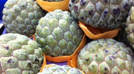 Sugar Apple Wallpaper Gallery