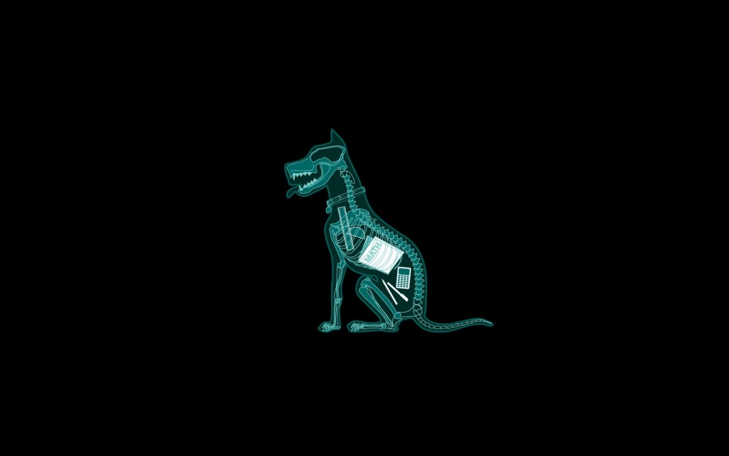 X-ray Animal wallpapers HD