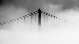 4K Bridge Fog Wallpaper Free