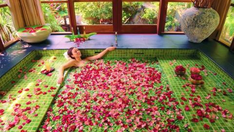 Bathroom Rose Petals wallpapers high quality