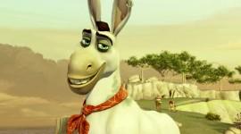 Donkey Xote Wallpaper For Desktop