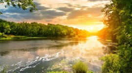 Forest River Sunset Wallpaper For PC