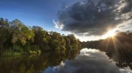 Forest River Sunset Wallpaper Full HD